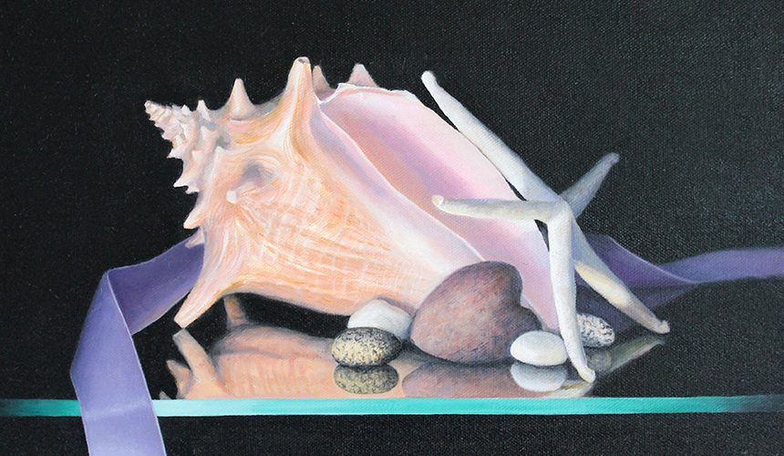 Marianne W. Smith Gallery, Lord Camden Inn, Camden Maine, Maine, Seashells
