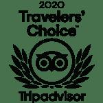 2020 Travelers Choice Award